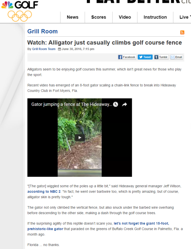 Watch  Alligator just casually climbs golf course fence   Golf Channel